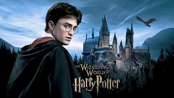 Harry Potter Franchise