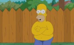 Video Homer Simpson Ice Bucket Challenge