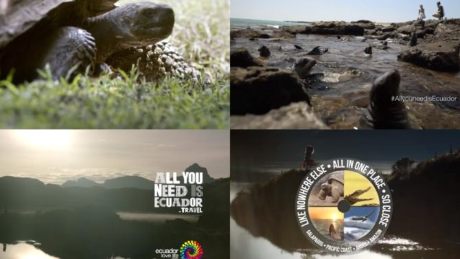 #AllYouNeedIsEcuador: Everything You Need Know About
