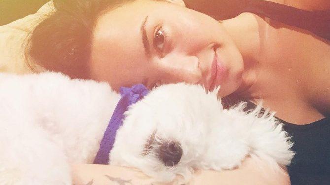 Muere Buddy, Perrito de Demi Lovato