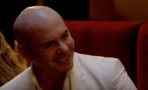 Pitbull Empire