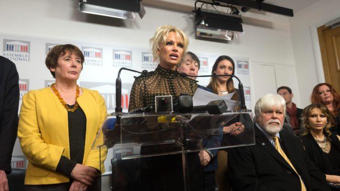 Pamela Anderson lucha en contra del