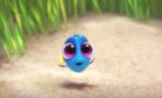 Pixar comparte nuevo video de 'Finding