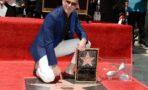 Pitbull estrella en el Paseo de