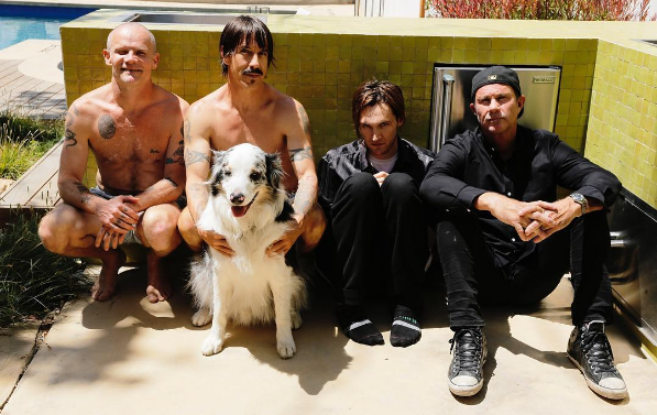 Confunden a Red Hot Chilli Peppers