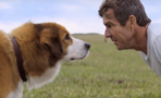 Tráiler de 'A Dog's Purpose'