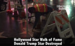 Video estrella Donald Trump paseo de