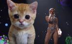 Miley Cyrus en los American Music